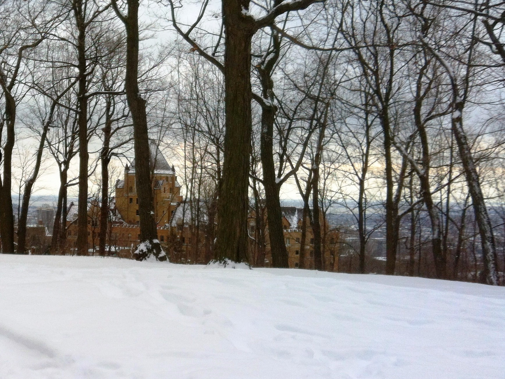 Snowshoeing in Montreal City