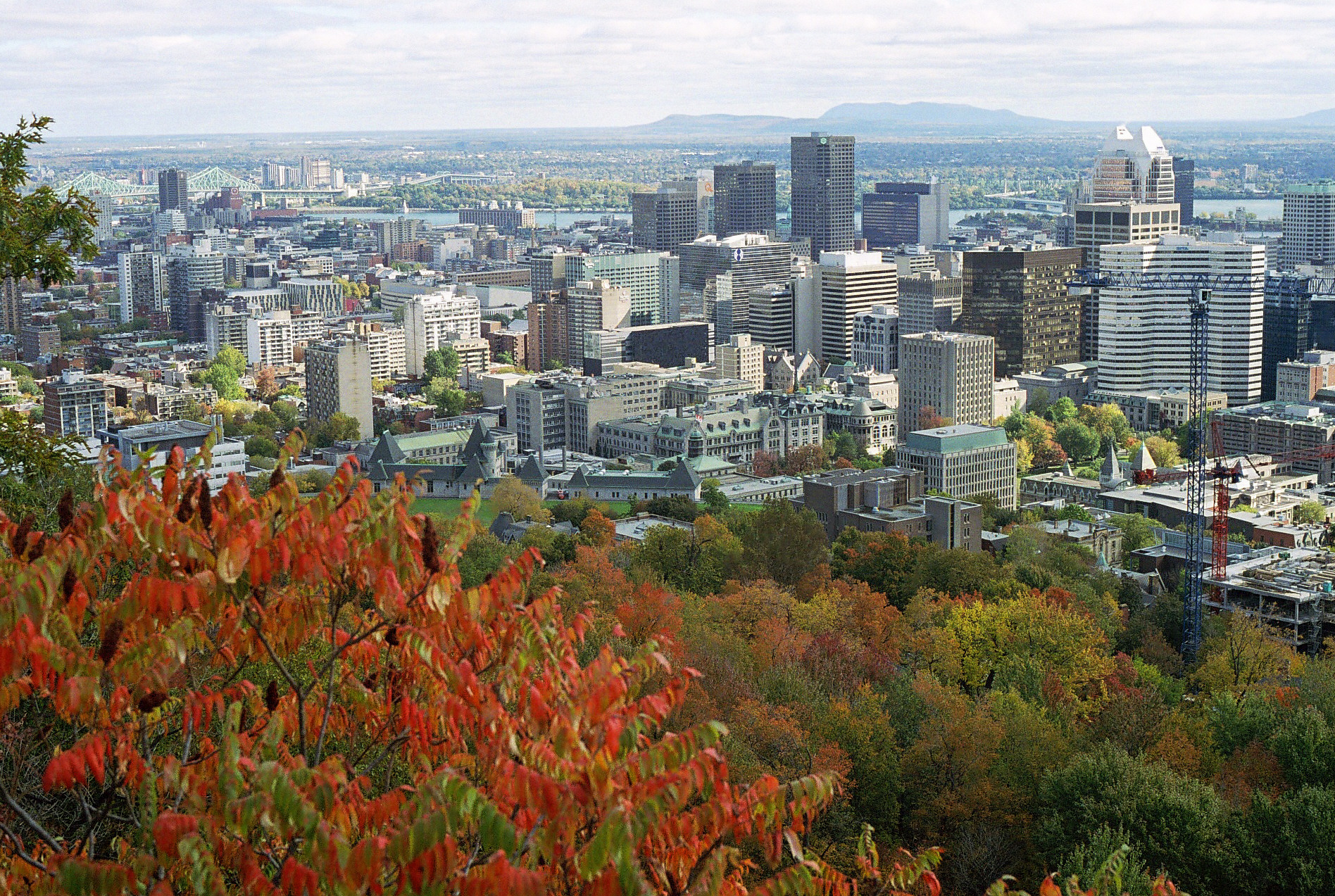The view on Mount-Royal in fall